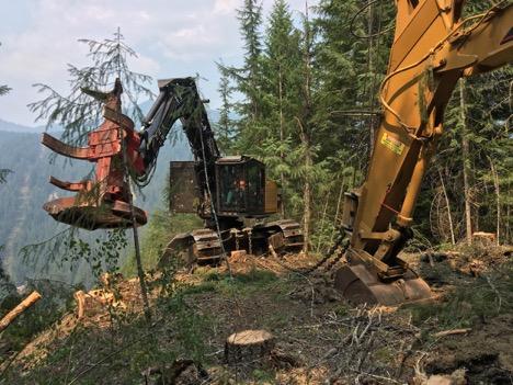 Steep-slope logging